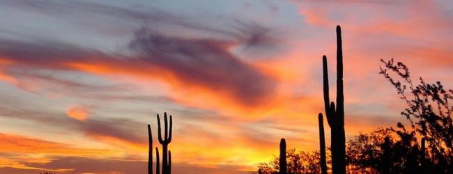 Arizona Fall League #3